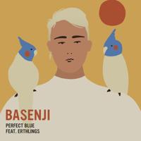 Basenji - Perfect Blue (feat. Erthlings) artwork