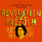 "Junior Dread;Subatomic Sound System - Revolution 2 Freedom (10"" Mix)"