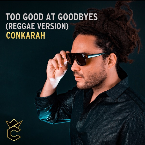 Too Good at Goodbyes (Reggae Version) - Single