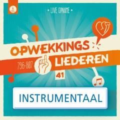 Opwekkingsliederen 41 (Instrumentaal)