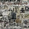 Mushroomhead - A Wonderful Life  artwork