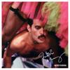 Freddie Mercury - Never Boring artwork