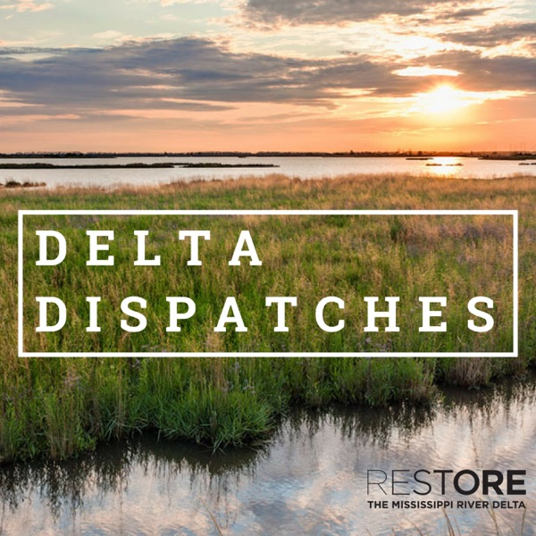 Delta Dispatches – Podcast – Podtail