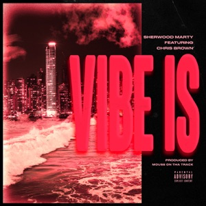 Vibe Is (feat. Chris Brown) - Single