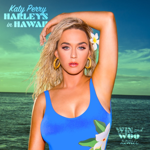 Harleys In Hawaii (Win and Woo Remix) - Single