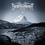 Borknagar - Up North
