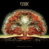 Cynic - Holy Fallout
