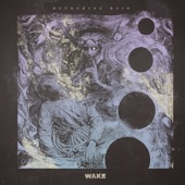 Wake - Dissolve and Release