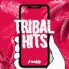 DJ Freshly - Freshly Tribal Hits portada