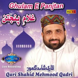 Qari shahid2019