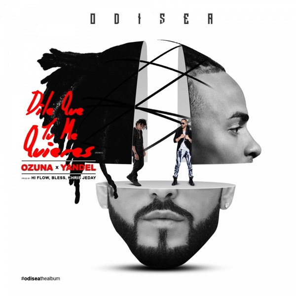 Dile Que Tu Me Quieres (Remix) [feat. Yandel] - Single