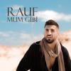 Rauf - Mum Gibi artwork