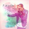 DJ Mr. T - Paradise Grafik