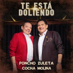 Poncho Zuleta & Cocha Molina - Te Está Doliendo