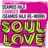 Seamus Haji - Changes (Seamus Haji Extended Re-Work) artwork