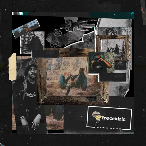 Afrocentric: The Adaptation Album Image