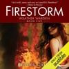 Firestorm: Weather Warden, Book 5 (Unabridged)