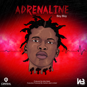 Boy Boy - Adrenaline