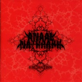 Anaal Nathrakh - The Destroying Angel