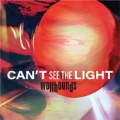The Wolfhounds - Can't See the Light (radio edit)
