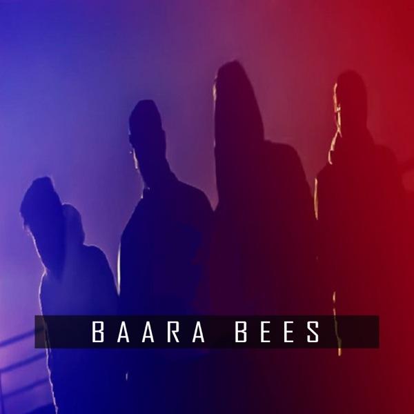 Baara Bees (feat. Mohad Ali, Aqeel Sarfraz & Raamis) - Single