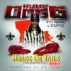 Headz or Tailz the Remix feat Nebu Cupid Single