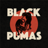 Black Pumas - Black Pumas  artwork