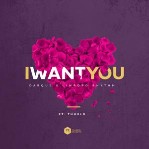 Darque & Limpopo Rhythm - I Want You feat. Tumelo [Radio Edit]