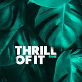 Siine - Thrill of It (feat. Frank Moody)
