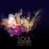 Brandee Younger - Soul Awakening  artwork