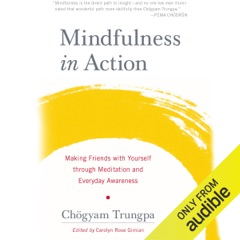 Mindfulness in Action: Making Friends with Yourself through Meditation and Everyday Awareness (Unabridged)
