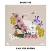 Bauke Top - Call for Spring bild