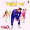 Tere Te Remix Single