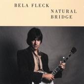 Béla Fleck - Bitter Gap