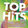 Various Artists - Top Hits 2020 artwork