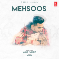 Amber Vashisht - Mehsoos - Single