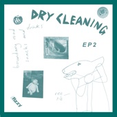 Dry Cleaning - Dog Proposal