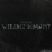 Scoring Wildemount, Vol. I