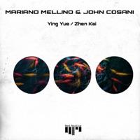 Ying Yue - MARIANO MELLINO-JOHN COSANI