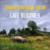 Late Bloomer - All the Gold