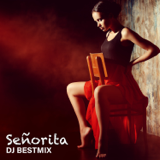 Señorita (Ringtone Version) - DJ BestMix