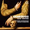 Le Poème Harmonique & Vincent Dumestre - Allegri & Monteverdi: Anamorfosi kunstwerk