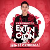 En Peligro de Extinción - Bembe Orquesta