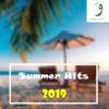 Summer Hits 2019 - Various Artists