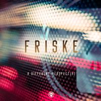 Friske - A Different Perspective artwork