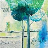 Avishai Cohen - Elchinov