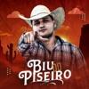 Surtada by Biu do Piseiro iTunes Track 1