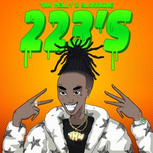 223s (feat. 9lokknine) - YNW Melly