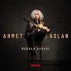 Ahmet Aslan - Böyledir Bizim Sevdamız artwork