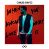 Craig David - When You Know What Love Is artwork